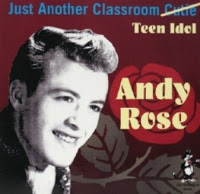 A Rose and A Thorn by Andy Rose – Vancouver Pop Music Signature