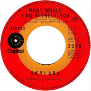 What Would I Do Without You by Skylark