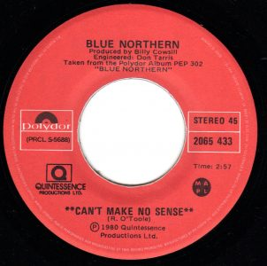 Can't Make No Sense by Blue Northern