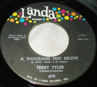 A Thousand Feet Below by Terry Tyler